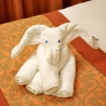 Carnival - Elephant